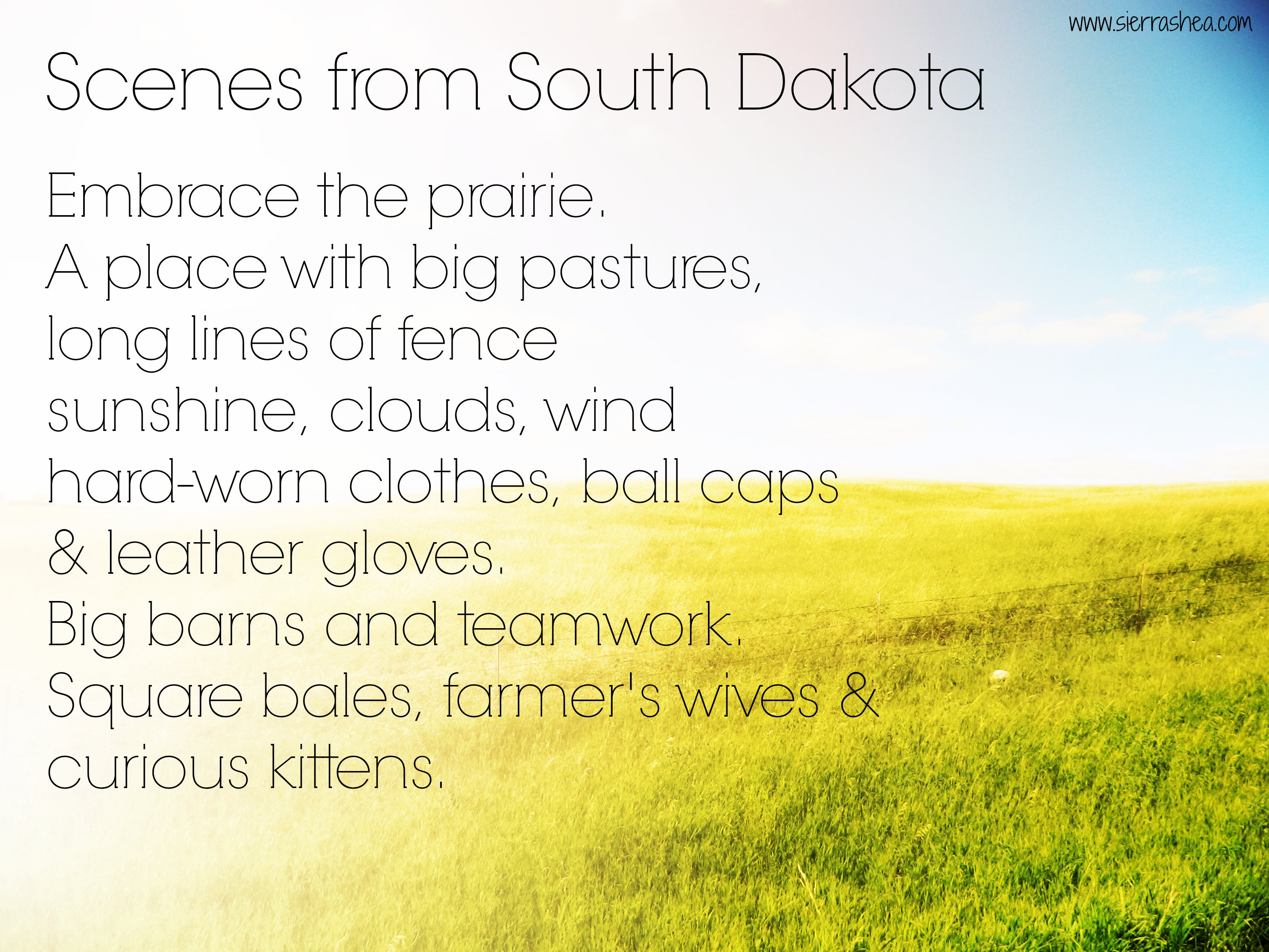 scenes from South Dakota