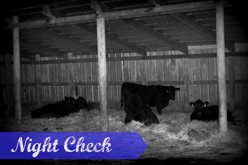 NightCheck