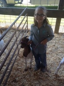 Farmin' Friday: Learning animal care principles at the fair