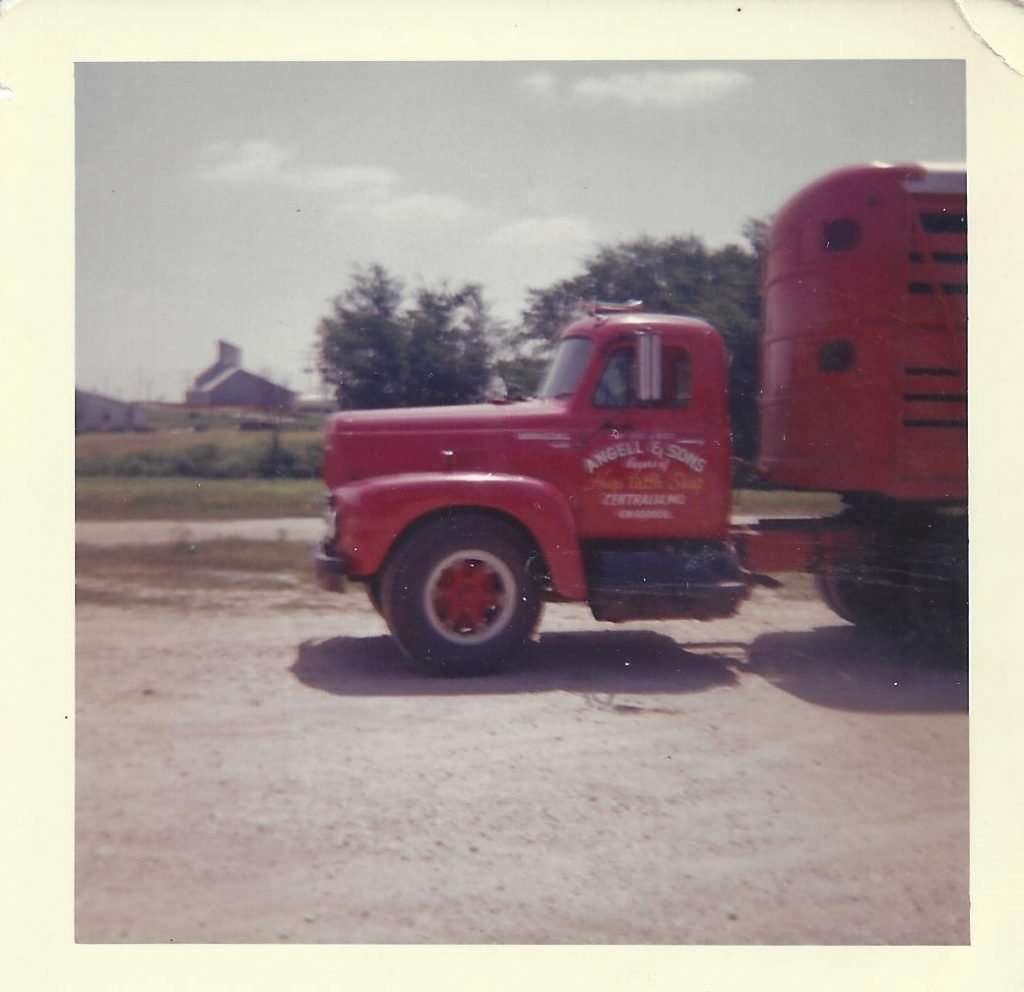 This was one of three red International trucks purchased by Angell and Sons to help facilitate picking up hogs all over Boone and Audrain Counties.