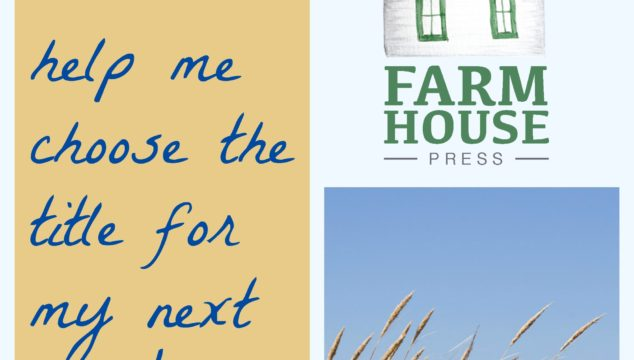 Help me choose the title for my next book!