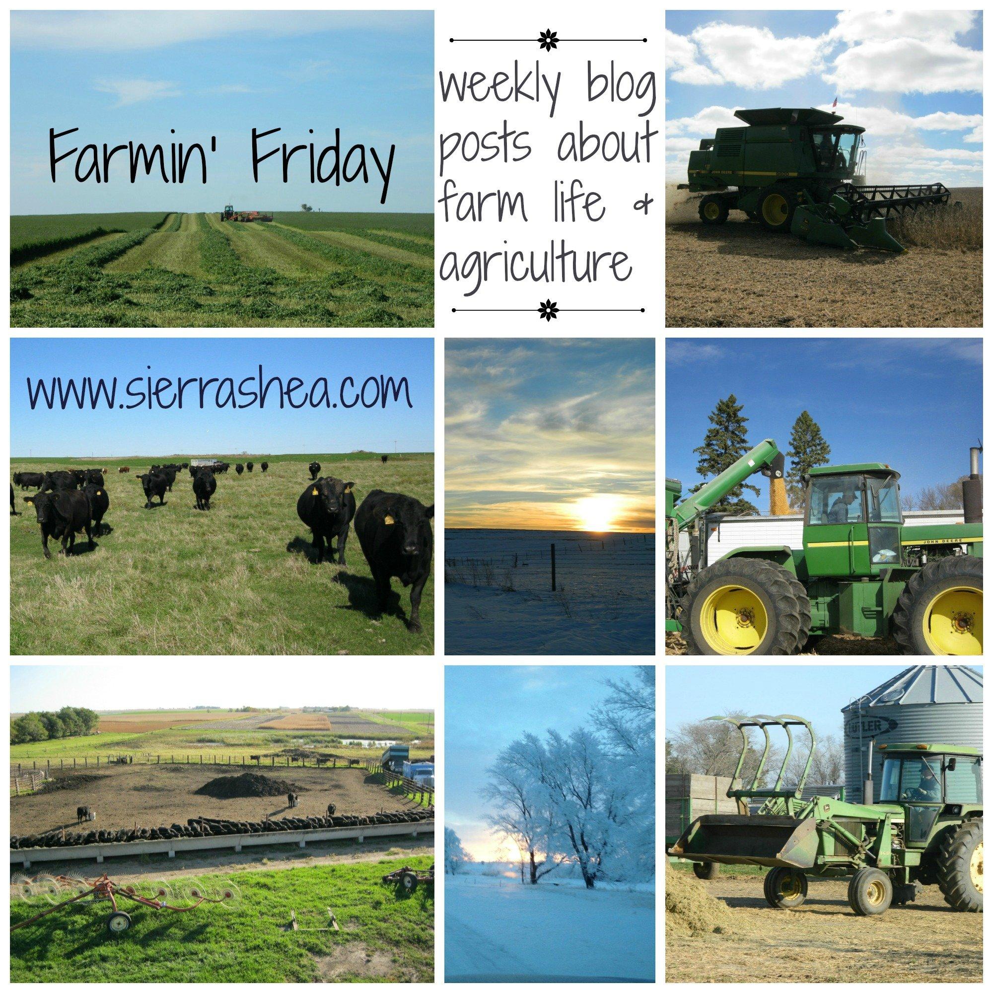 FarmingFriday